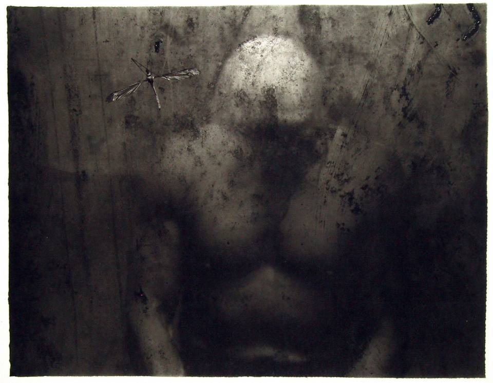 Carbon Print No. 3, 2004, 35x30 cm, limited edition of 24 copies